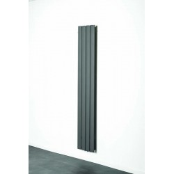 Radiator Banio-Romy Couleur Gris Hoogte 180 cm Breedte 31,5 cm