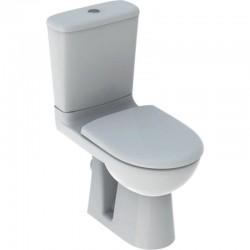 Wc Flush Geberit - verticale afvoer